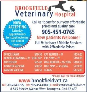2019 Ontario Low Cost Spay/Neuter, Vaccination + Microchip